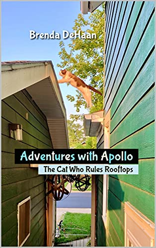 Free: Adventures with Apollo: The Cat Who Rules Rooftops